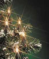 Kerstverlichting helder buiten 160 lampjes 29 meter